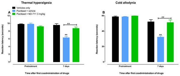 Coadministration of NO-711 with paclitaxel protects against the development of paclitaxel-induced thermal hyperalgesia and cold allodynia.