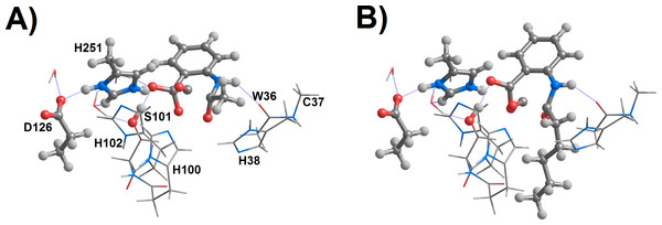 Proposed geometries of the transition states for the 1I2→ product reaction step for the (A) methyl-, and (B) pentyl-substituted 4-oxoquinolines.