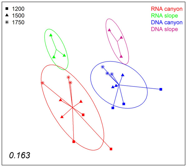 nMDS representation of the samples from which DNA and RNA was co-extracted (the three layers per sample pooled).