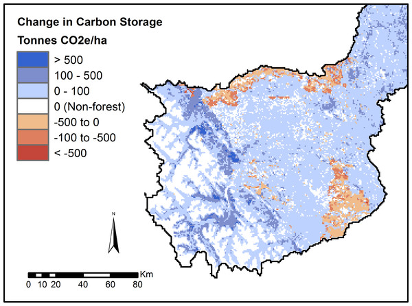 Modelled change in forest carbon storage following timber harvest.