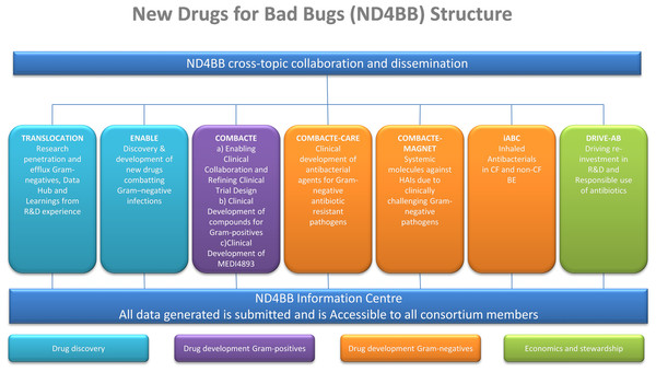 Structural outline of the New Drugs for Bad Bugs (ND4BB) framework.