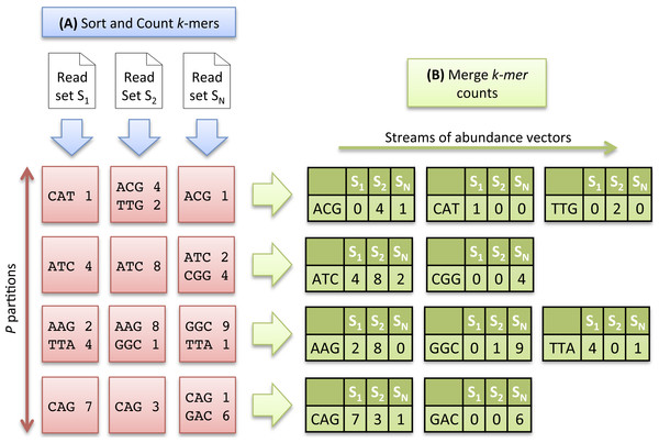 Multiset k-mer Counting strategy with k = 3.