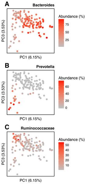 Relative abundances of main genera in HMP gut samples.