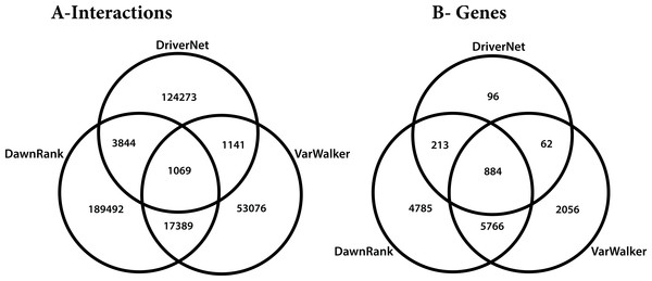 Venn diagram of the 3 networks and how they overlap (A) number of interactions (B) number of genes.