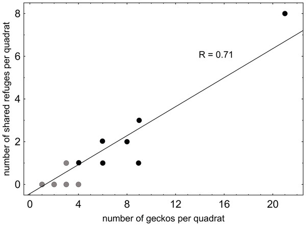 Relationship between refuge sharing and gecko densities on São Vicente Island.