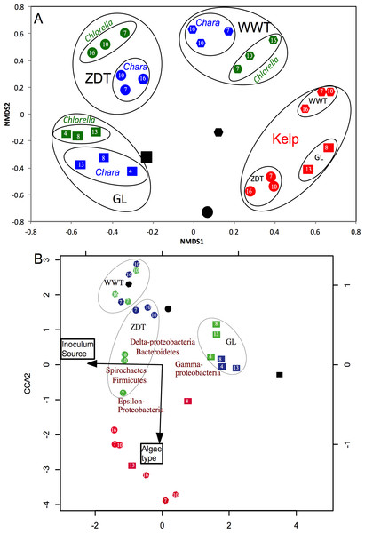 Microbial community structure analysis in the enrichment microcosms (n = 26) as compared to the pre-enrichment inoculum sources (n = 3).