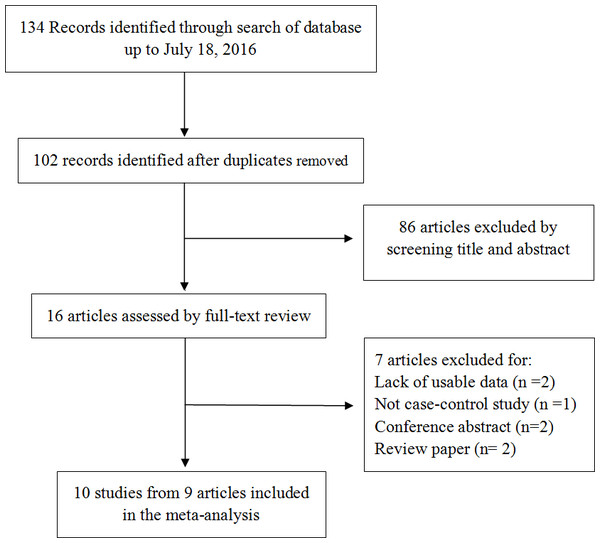 Flow chart of the studies selection.