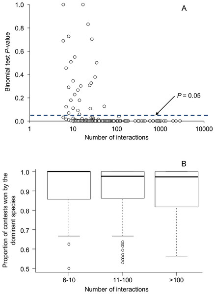 Relationship between the number of aggressive interactions observed between each species pair and (A) binomial test P-values testing for asymmetries in the outcomes of aggressive interactions, and (B) the proportion of aggressive contests won by the dominant species.