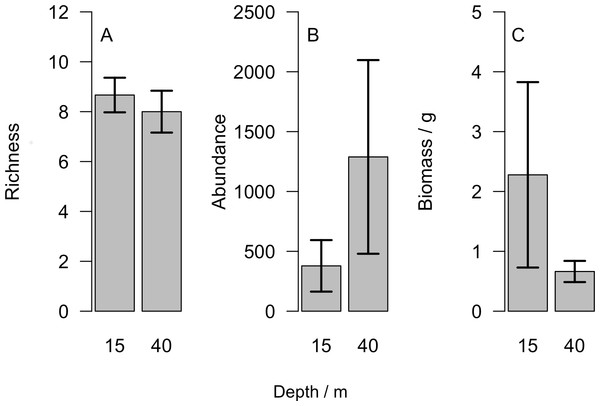 (A) Number of different taxonomic groups recorded, (B) mean abundance per light trap and (C) total biomass across all taxa groups comparing reefs at 15 m and 40 m.