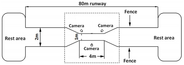 Schematic diagram of the experimental site of 80 m long.
