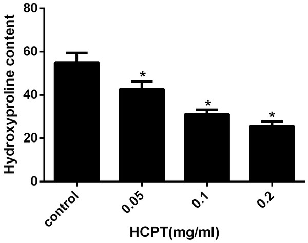 The effect of HCPT on epidural collagen tissue in rats.