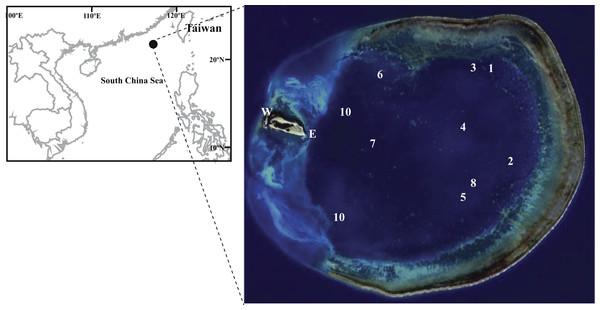 Figure of sampling location.