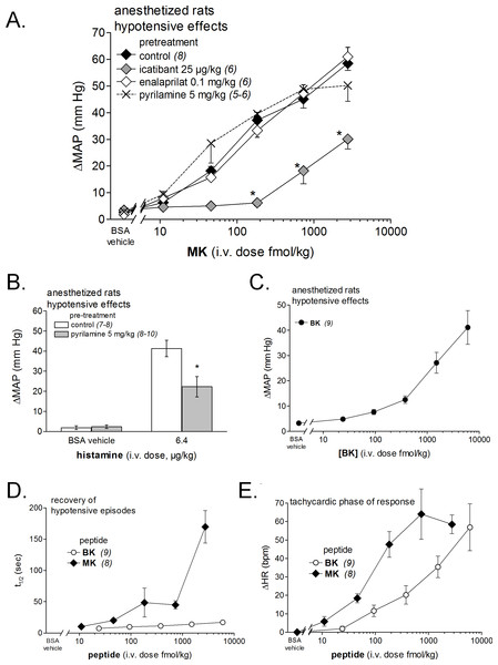 Hemodynamic responses to i.v. bolus injections of increasing doses of B2R agonists in anesthetized rats.