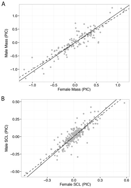 Phylogenetic independent contrasts regressed using standardized major axis regression for male and female body size measurements of turtle species.