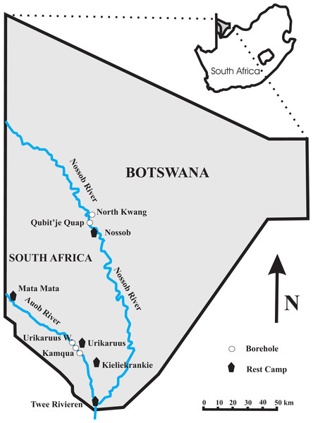 Map of the Kgalagadi Transfrontier Park showing the location of the four boreholes at which both water and twig samples were collected.