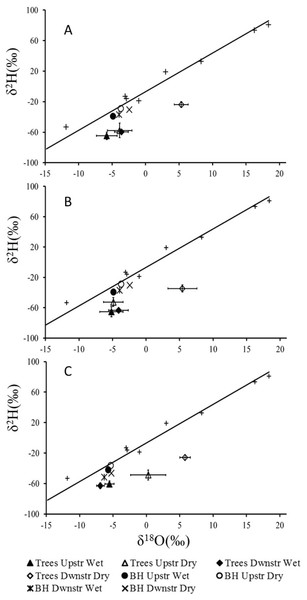 Mean δ18O and δ2H values (±1 SE) for xylem water of (A) Auob River, Acacia haematoxylon (B) Auob River, Acacia erioloba and (C) Nossob River, Acacia erioloba for two seasons (wet and dry).