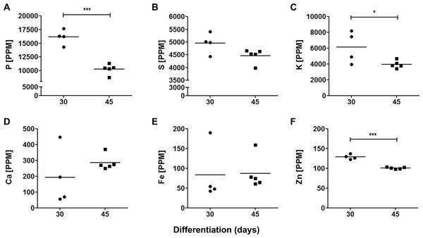 Elemental quantification in cerebral organoids.