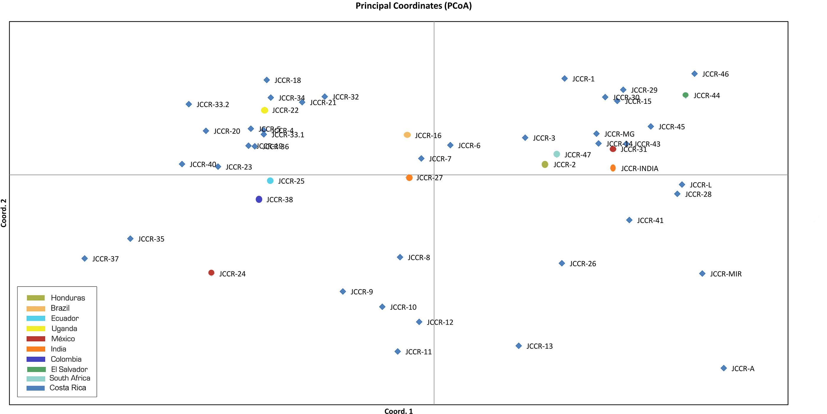 Molecular characterization and genetic diversity of Jatropha