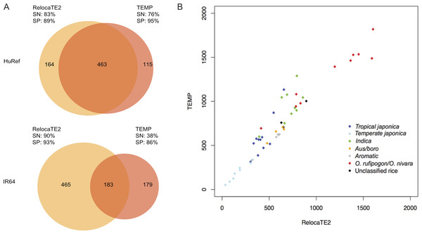 Performance of RelocaTE2 and TEMP on biological dataset in HuRef genome, IR64 genome, and 50 rice and wild rice strains.