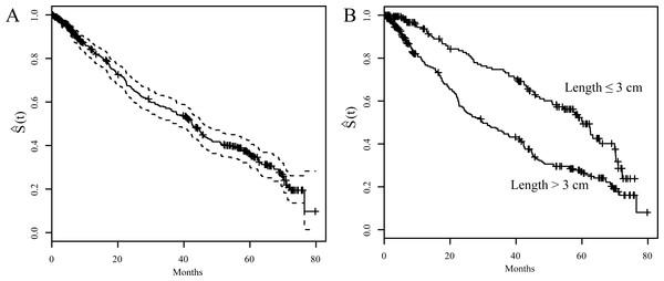 Kaplan-Meier survival curves (S(t)).