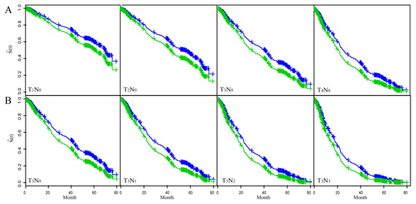 The fitted result of ESCC patients based on the multivariate Cox proportional hazard regression model.