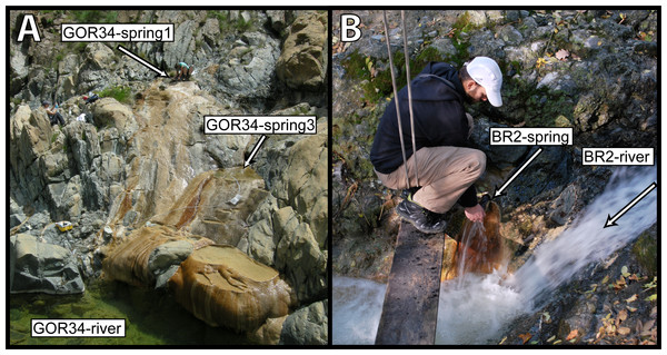 Ultrabasic springs of the Voltri Massif in Italy were sampled at two locations.