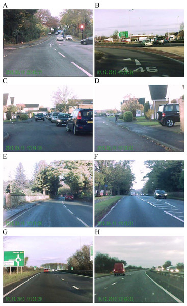 Example frames from traffic videos used in this study.