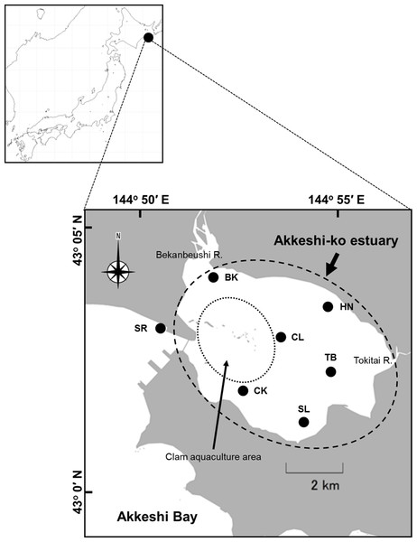 Location of the study sites in the Akkeshi-ko estuary and the Akkeshi Bay in Northeastern Japan.