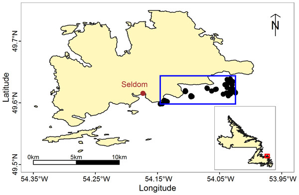 Map of our study site, off of the southern coast of Fogo Island NL.
