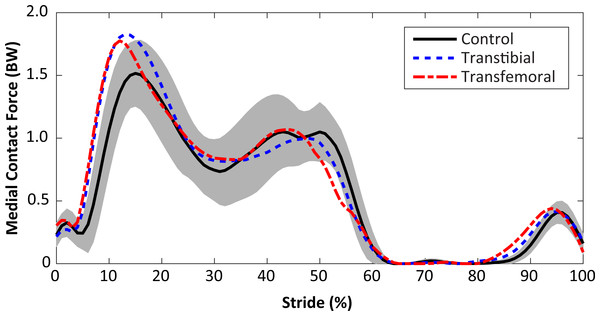 Medial knee joint contact forces in percent bodyweight (BW) during the stride, beginning at heel-strike.