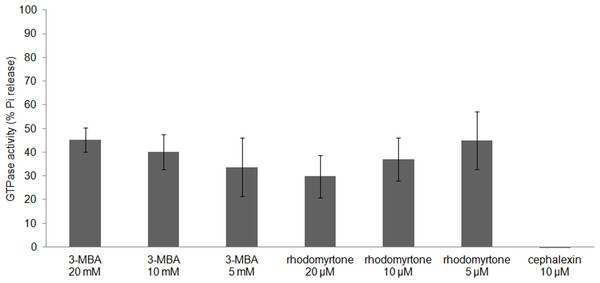 Effect of rhodomyrtone on the GTPase activity of purified FtsZ.