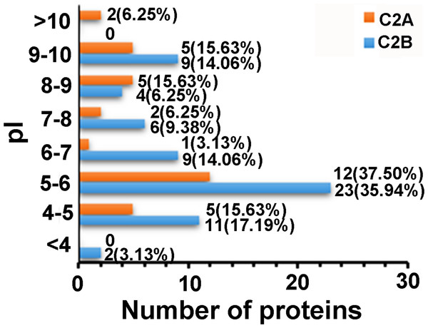 Distributions of the proteins that only interacted with C2A or C2B domains as a function of pI.