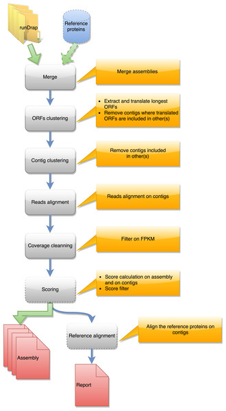 Steps in runMeta workflow.