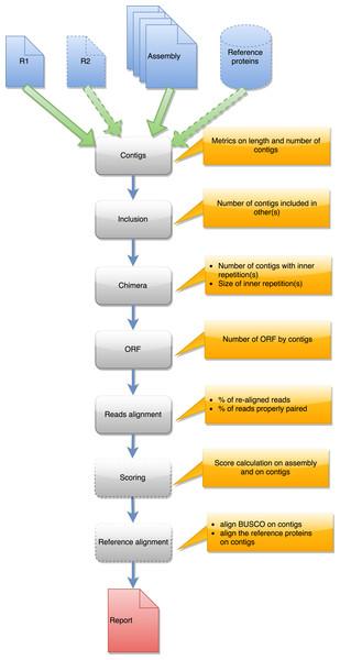 Steps in runAssessment workflow.