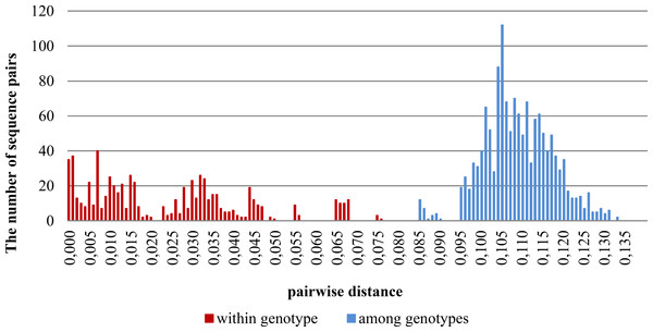 Distribution of pairwise distances within and among genotypes based on the Kimura 2-parameter model of nucleotide substitution.