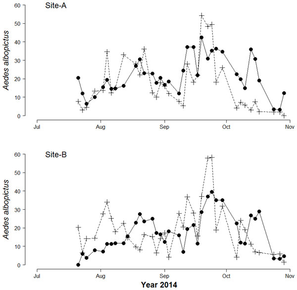 Seasonal patterns of Aedes Albopictus eggs and adults.