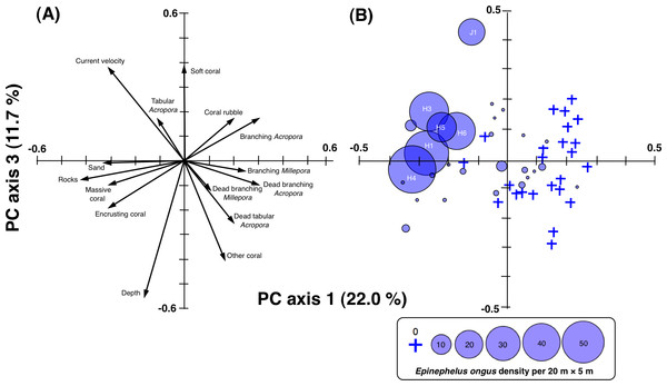 Result of principal component analysis (PCA) showing the relationship between 15 environmental variables and quadrants (A) and PCA scores of 5-minute sub-transects (B) on PC axis 1 and PC axis 3.