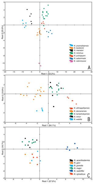 Morphometric differentiation of species using the discriminant function analyses.