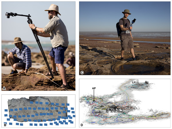 Ground-based data acquisition techniques used on Broome Sandstone dinosaurian tracksites.