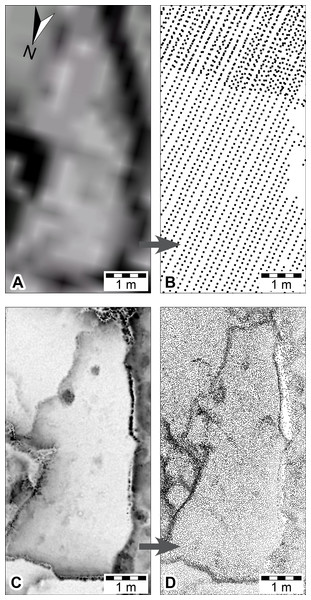 DSMs of Megalosauropus broomensis trackways (UQL-DP56-4, -5 and -9) at Minyirr derived from various laser acquisition methods, over an area of approximately 20 m2.