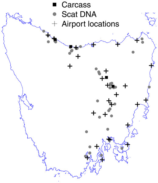 Map of Tasmania (excluding islands in Bass Strait) showing the locations of fox scat-DNA and carcass evidence underpinning the widespread hypothesis of Sarre et al. (2013) and the locations of active airports from which runway strike data were used.