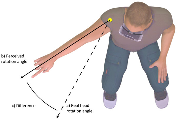 Change in perceived body position (C) was operationalized as the difference between perceived head rotation (B) after movement during altered visual feedback, relative to during movement with normal visual feedback (A).