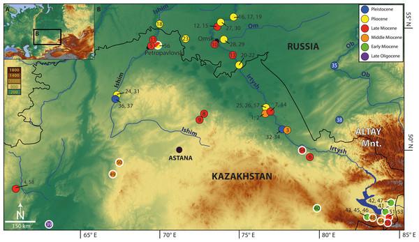 Map of Eurasia (A) showing location of the Western Siberian studied fossil sites (B) (1–38, 58; black—thin outlined circles) as well as localities known from the literature (39–57; white—thick outlined circles).