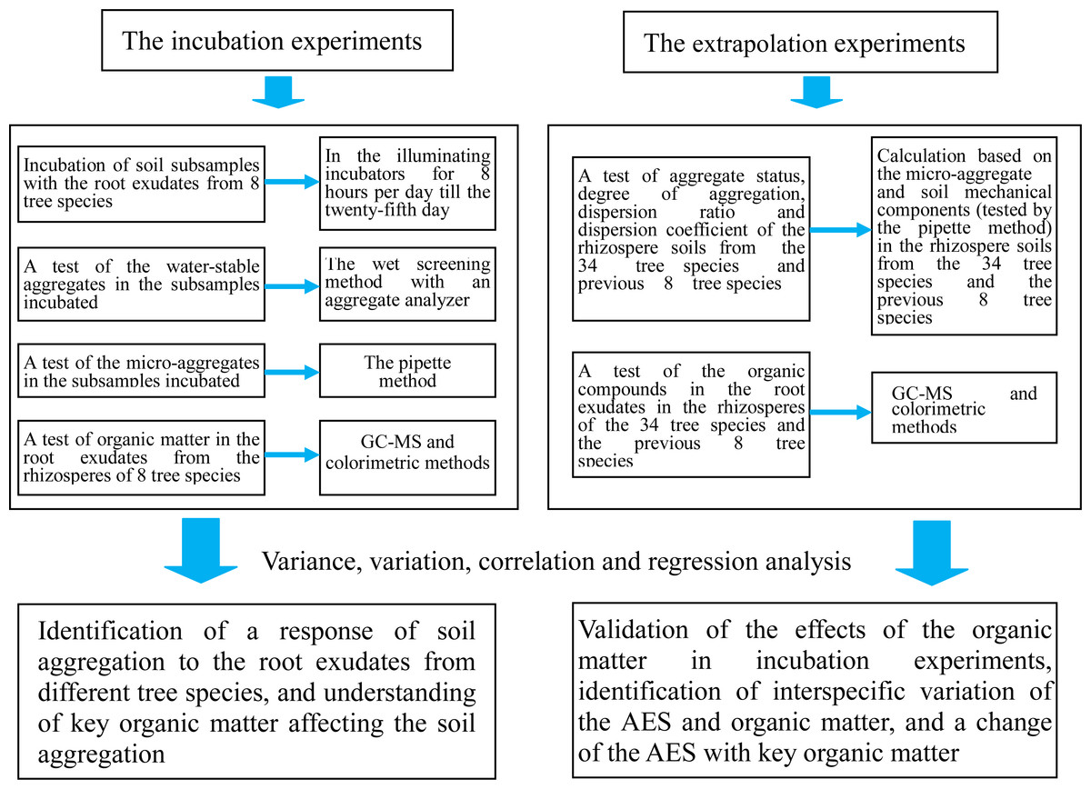 Effects of root exudates of woody species on the soil anti flowchart of the study biocorpaavc Image collections