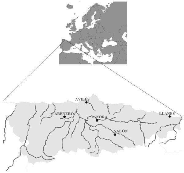 Map from Asturias (Spain).