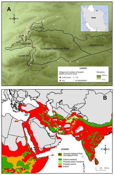 Study villages and leopard (Panthera pardus) attacks on sheep and goats around Golestan National Park and adjacent protected areas (PA) (A) and the current leopard distribution area (B).