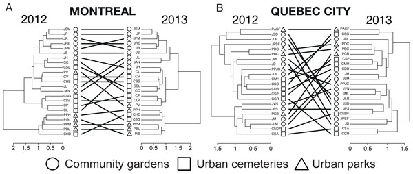 A tanglegram approach to the analysis of changes in wild bee community structure among sites and habitat types between 2012 and 2013 in Montreal (A) and Quebec City (B).