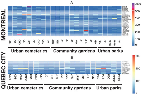 Heat map illustrating the abundant species in both cities (Montreal (A) and Quebec City(B)) and in all three urban habitats (cemeteries, community gardens and city parks).