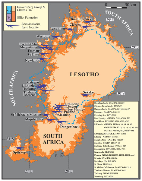 Map of localities for a total of 46 Lesothosaurus diagnosticus and Lesothosaurus cf. diagnosticus specimens in the upper Elliot Formation of Lesotho and South Africa.