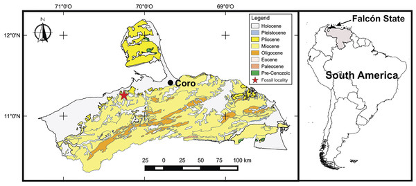 Map of the fossil locality in Venezuela.
